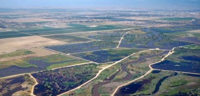 California Water Blog